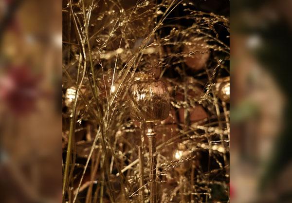 Advent in der Langener Blumen-Stubb ... 3